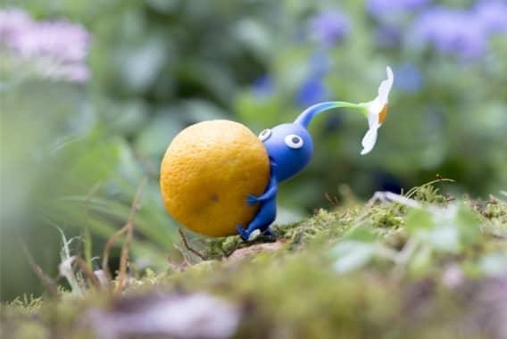 Imagen de Pikmin azul llevando fruta.