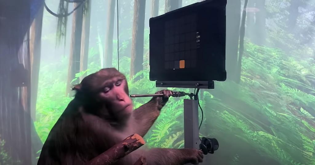 Mono controlando el joystick para calibrar.