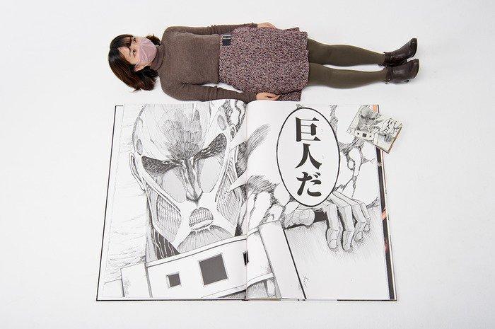 Fotografía de 'Attack on Titan for giants'.